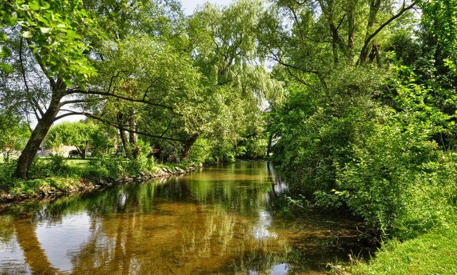 44-Creek