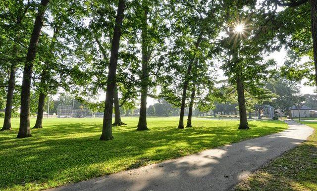 32-Lincoln Park